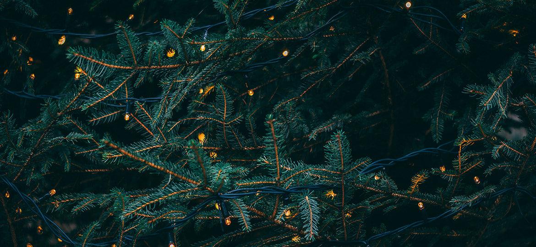 Weihnachtsmarkt Absage